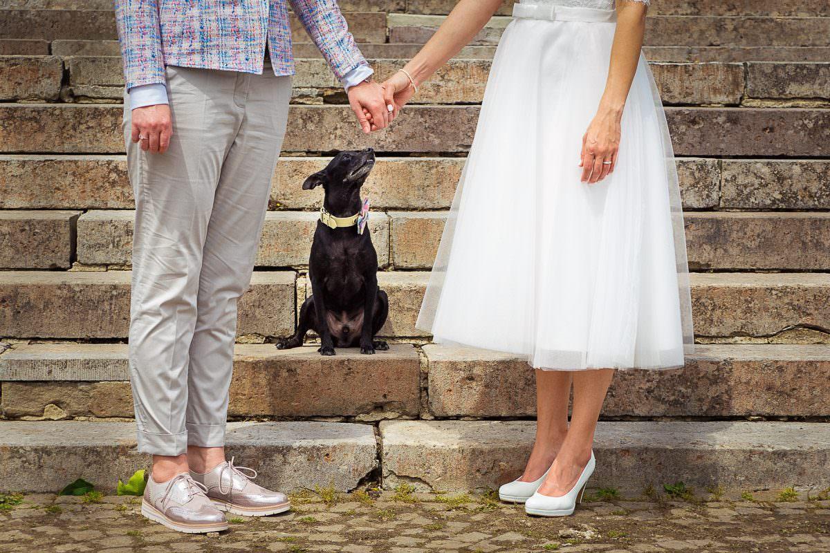 Brautpaarfotos mit Hund