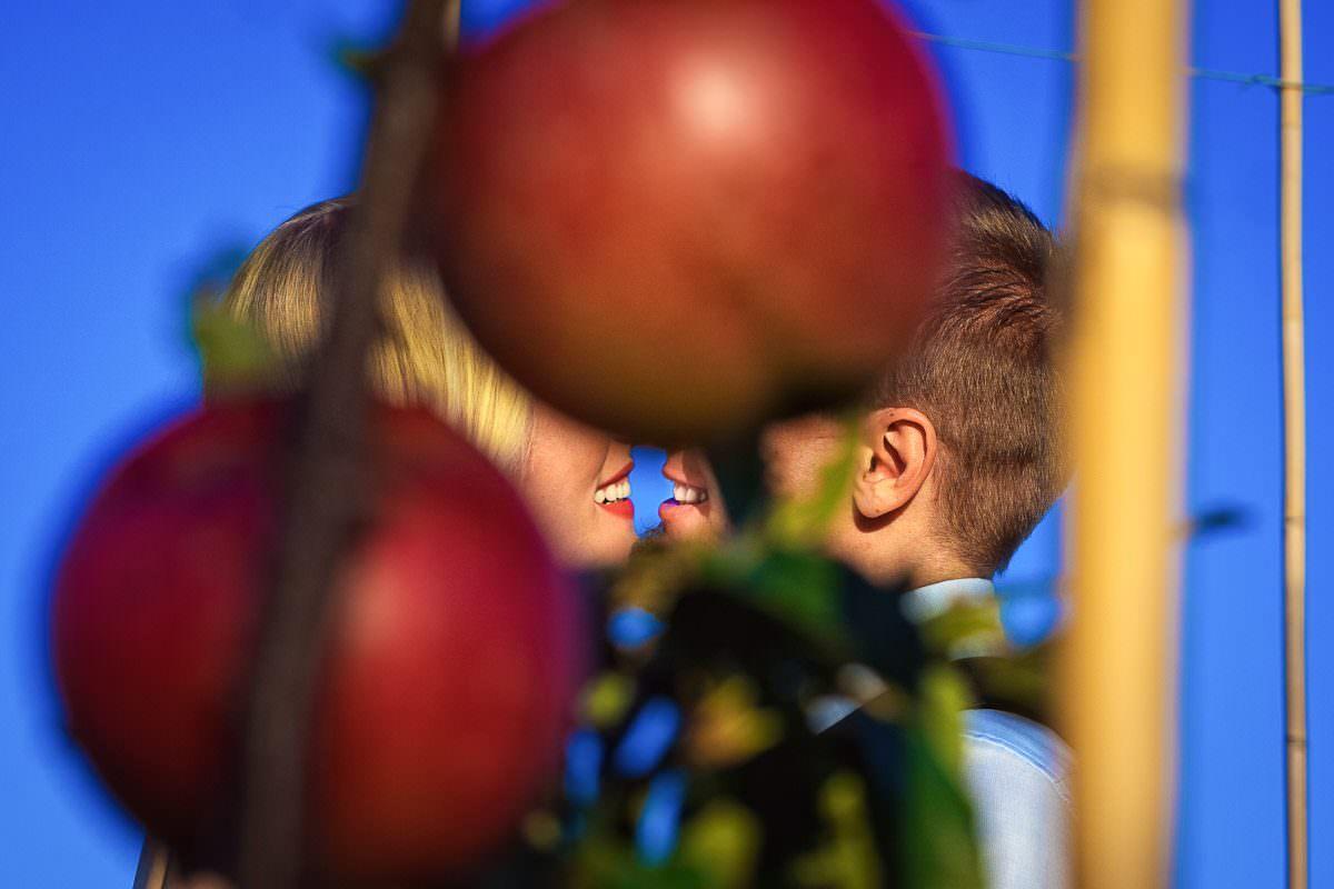 Hochzeit im Freien in Apfelplantage