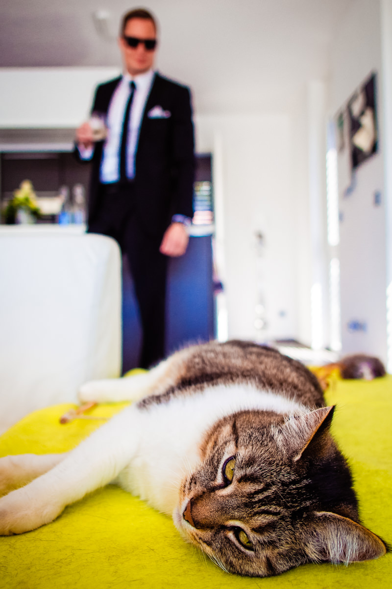 Hochzeitsvorbereitung mit Katze und Hochzeitsfotograf Solingen