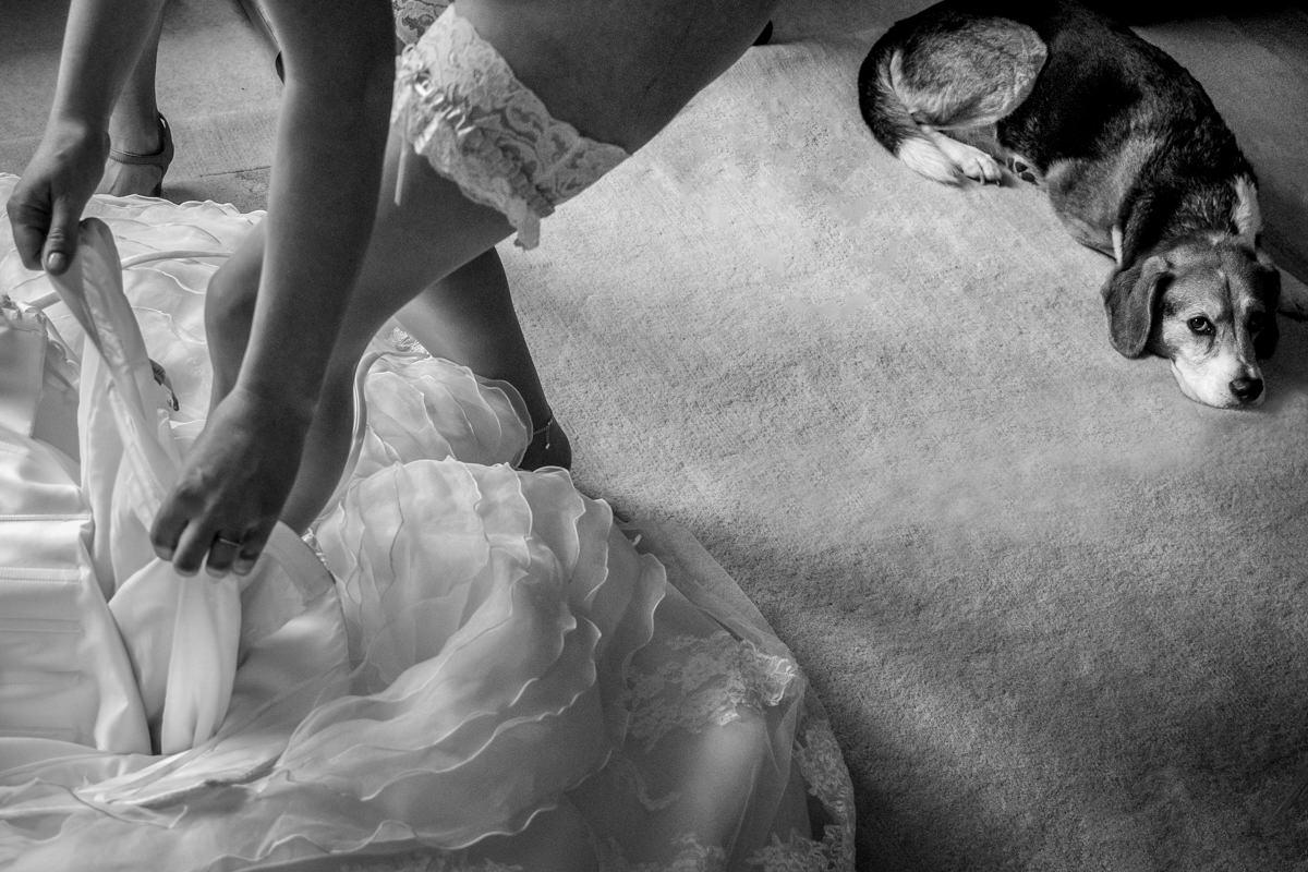 Heiraten in Bonn mit Hochzeitsfotograf Bonn